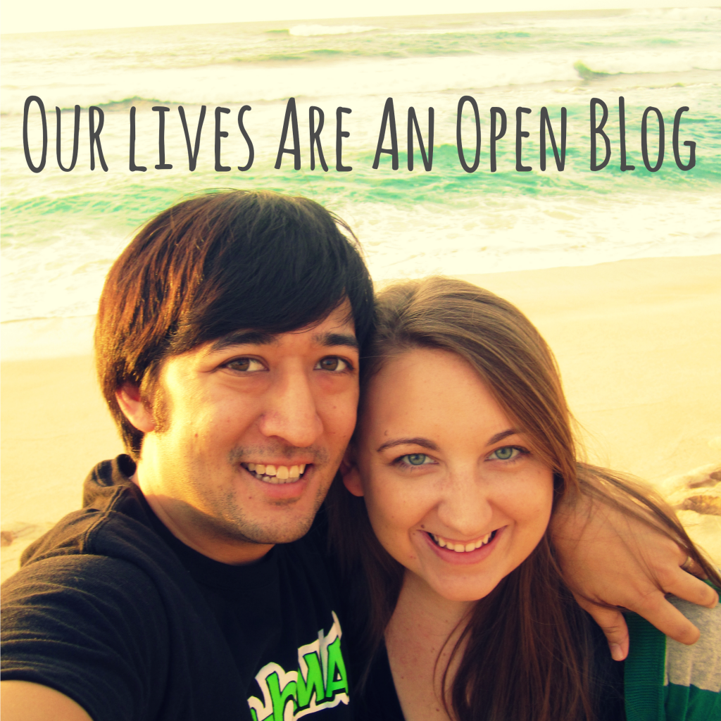 Our Lives Are An Open Blog